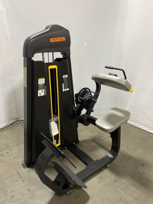 Fettle Fitness Selectorized Back Extension