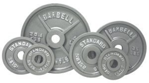 10Lb Troy USA Gray Olympic Weight Plate - O-010